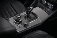 Carbon detail voor knop pook automatische versnellingsbak